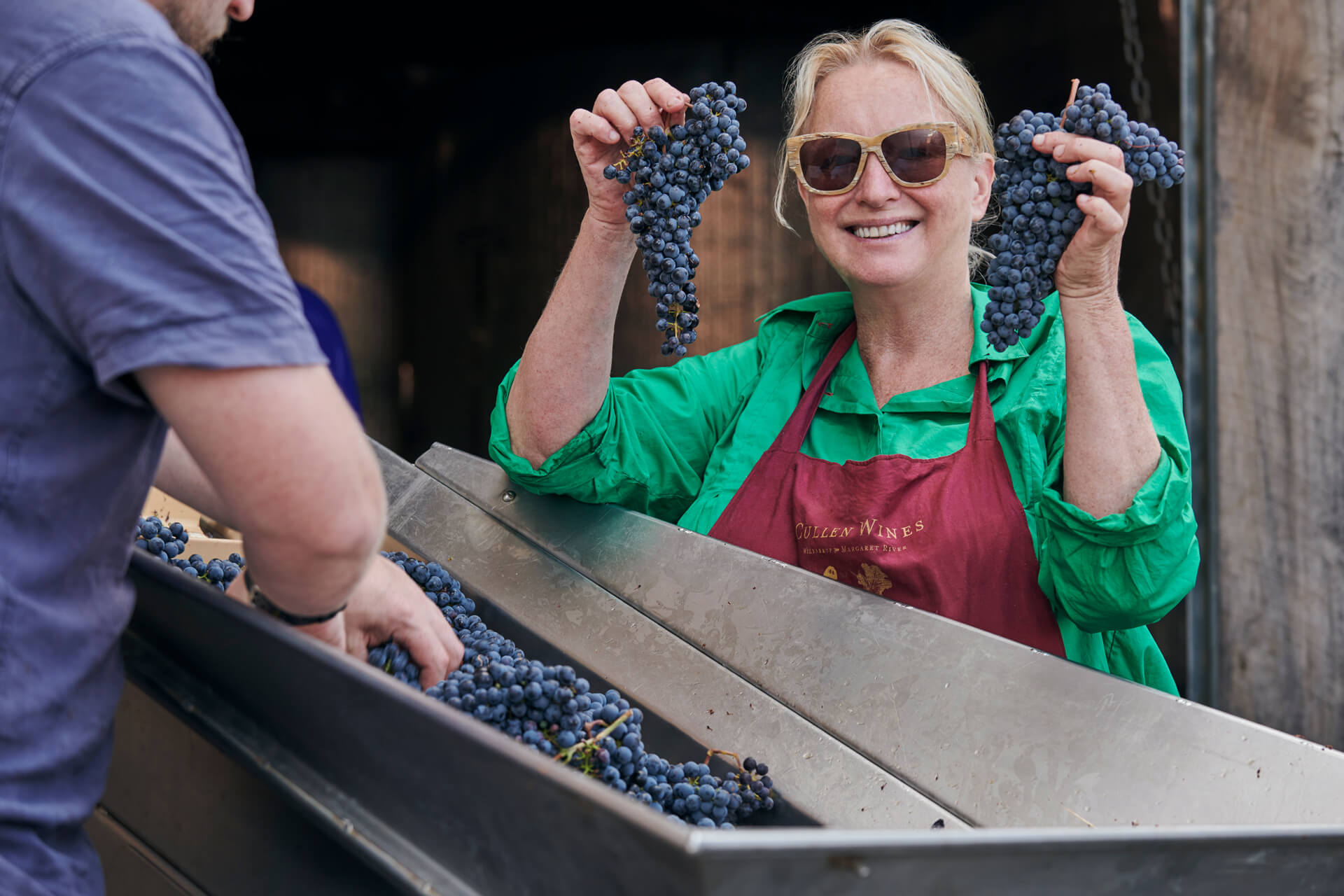 Vanya Cullen with harvested cabernet sauvignon grapes during vintage